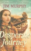 DESPERATE JOURNEY by Jim Murphy
