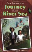 Cover art for JOURNEY TO THE RIVER SEA