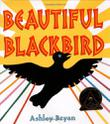 Cover art for BEAUTIFUL BLACKBIRD