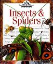 INSECTS & SPIDERS
