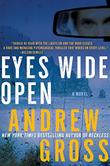 EYES WIDE OPEN by Andrew Gross