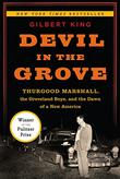 Cover art for DEVIL IN THE GROVE