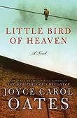 Cover art for LITTLE BIRD OF HEAVEN