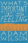 WHAT'S IMPORTANT IS FEELING by Adam Wilson