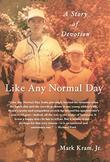 Cover art for LIKE ANY NORMAL DAY