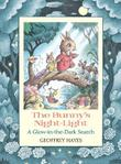 THE BUNNY'S NIGHT-LIGHT by Geoffrey Hayes