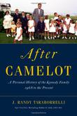 Cover art for AFTER CAMELOT