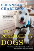 Cover art for THE POSSIBILITY DOGS