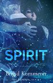 Cover art for SPIRIT