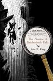 THE SHADOW OF REICHENBACH FALLS by John R. King