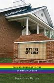 Cover art for PRAY THE GAY AWAY