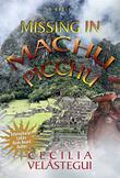 Cover art for MISSING IN MACHU PICCHU
