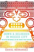 DOWN & DELIRIOUS IN MEXICO CITY by Daniel Hernandez