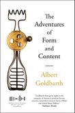 THE ADVENTURES OF FORM AND CONTENT