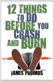 12 THINGS TO DO BEFORE YOU CRASH AND BURN by James Proimos