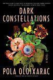 DARK CONSTELLATIONS by Pola Oloixarac