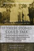 IF THESE STONES COULD TALK by Elaine  Buck