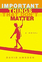 IMPORTANT THINGS THAT DON'T MATTER by David Amsden