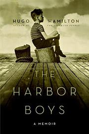 THE HARBOR BOYS by Hugo Hamilton
