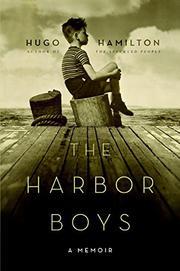 THE HARBOR BOYS by Hugo Hamilton