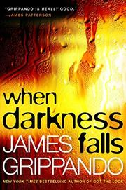 WHEN DARKNESS FALLS by James Grippando