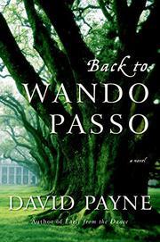 BACK TO WANDO PASSO by David Payne