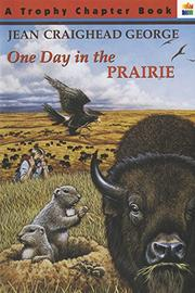 Book Cover for ONE DAY IN THE PRAIRIE