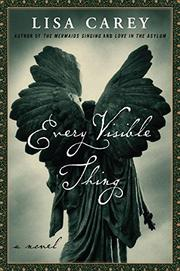 EVERY VISIBLE THING by Lisa Carey