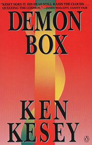 Book Cover for DEMON BOX