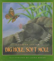Cover art for DIG HOLE, SOFT MOLE