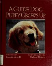 A GUIDE DOG PUPPY GROWS UP by Caroline Arnold