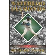 WATERLOO DIAMONDS by Richard Panek