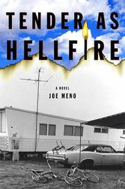 TENDER AS HELLFIRE by Joe Meno