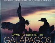 DAWN TO DUSK IN THE GALAPAGOS by Rita Golden Gelman