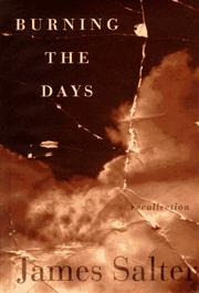 Cover art for BURNING THE DAYS
