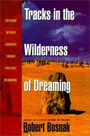 TRACKS IN THE WILDERNESS OF DREAMING by Robert Bosnak
