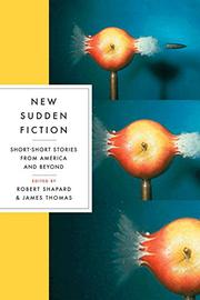 Cover art for NEW SUDDEN FICTION