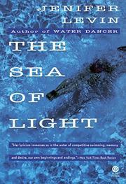 THE SEA OF LIGHT by Jenifer Levin