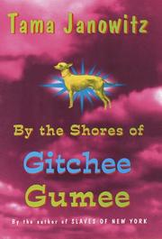 BY THE SHORES OF GITCHEE GUMEE by Tama Janowitz