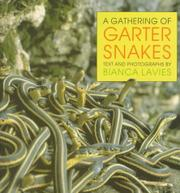 A GATHERING OF GARTER SNAKES by Bianca Lavies