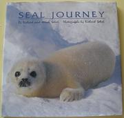 SEAL JOURNEY by Richard Sobol