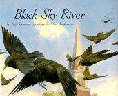 Cover art for BLACK SKY RIVER