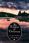 THE TEMPEST OF CLEMENZA by Glenda Adams
