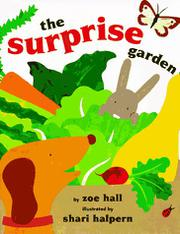 Book Cover for THE SURPRISE GARDEN