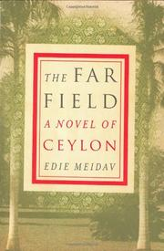 THE FAR FIELD by Edie Meidav