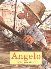 Book Cover for ANGELO