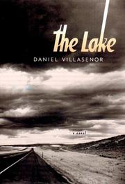 THE LAKE by Daniel Villasenor