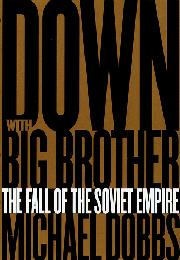 Book Cover for DOWN WITH BIG BROTHER