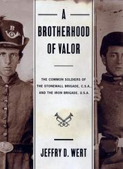 Cover art for A BROTHERHOOD OF VALOR