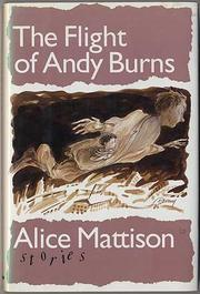 THE FLIGHT OF ANDY BURNS by Alice Mattison